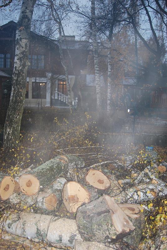 смета на опиловку деревьев образец - фото 10